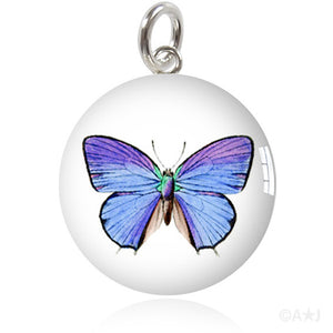 Common Blue Butterfly Meniscus Pendant