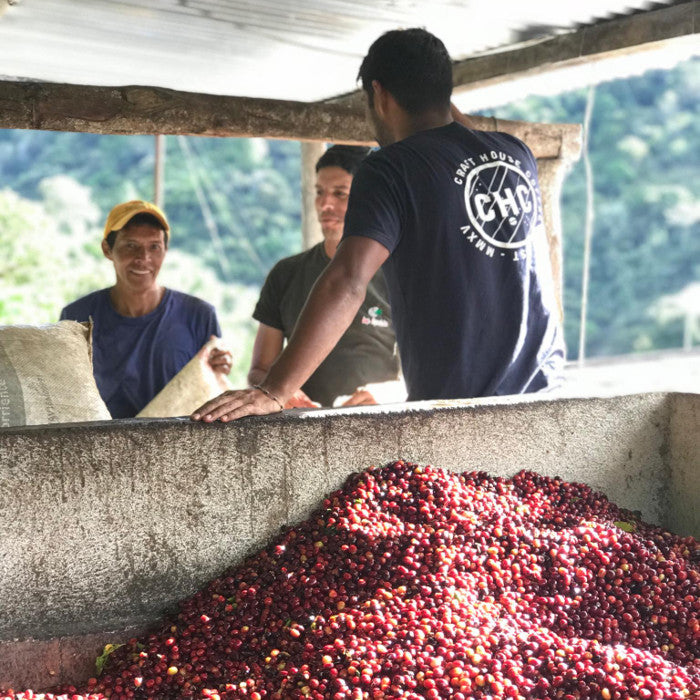 Sourcing our Coffee