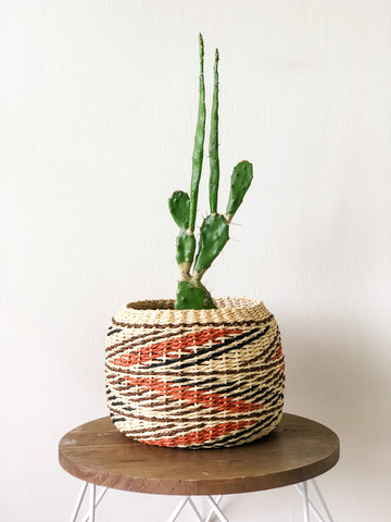 Cardamom Planter Basket