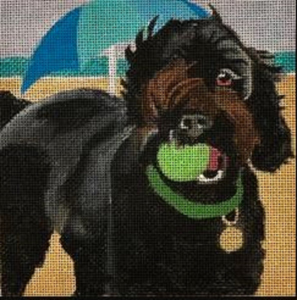 Needlepoint Handpainted Melissa Prince Beach Happy DOG 6x6