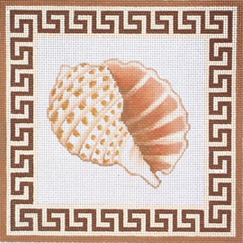 NEEDLEPOINT HandPainted Canvas Amanda Lawford SHELL Beach 8x8 13M