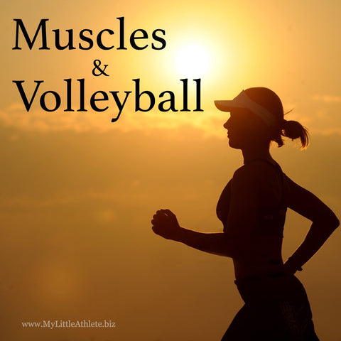 volleyball workout plans