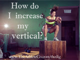 increase your vertical