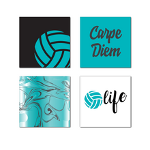 Volleyball Magnet Pack, Teal