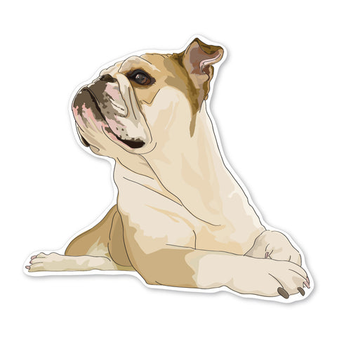 Diesel the English Bulldog Decal