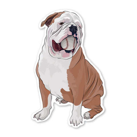Sampson the English Bulldog Decal