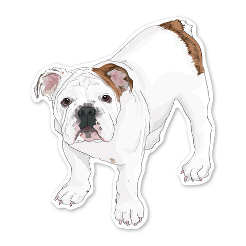 Truman the English Bulldog Puppy Decal