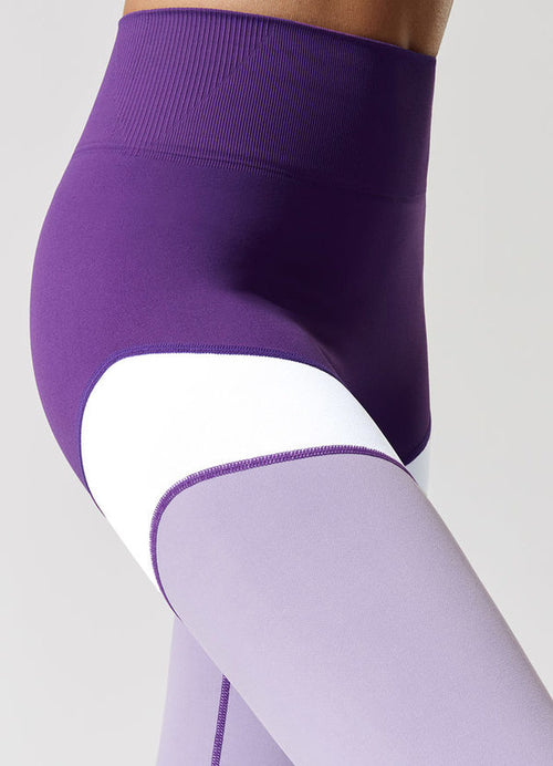 Fitify Royal Leggings (Waist)