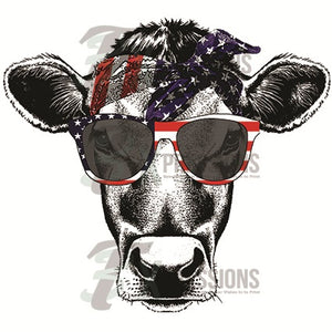 Patriotic cow scarf and glasses