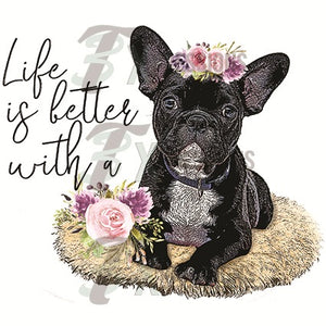 Life is better with a Frenchie