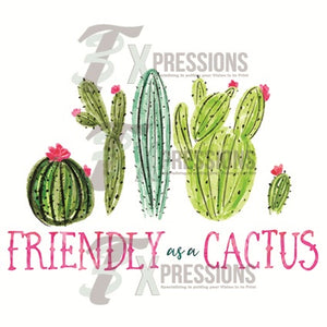 Friendly as a cactus - 3T Xpressions