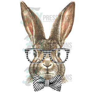 Rabbit with glasses and bow tie