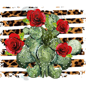 Cactus with roses