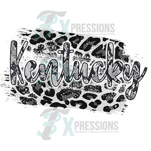 Kentucky black snake skin