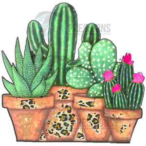 Potted Cactus with leopard