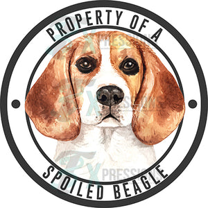 Property of a Spoiled Beagle