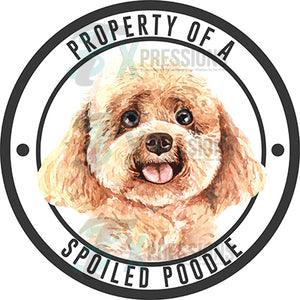 Property of a Spoiled Poodle