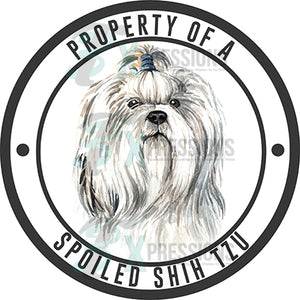 Property of a Spoiled Shih Tzu