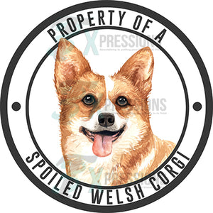Property of a Spoiled Welsh Corgi