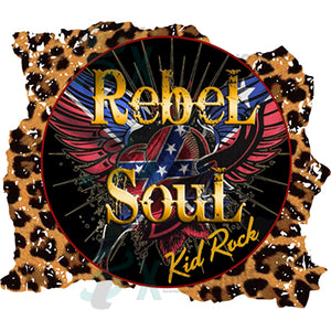 Kid Rock Rebel Soul