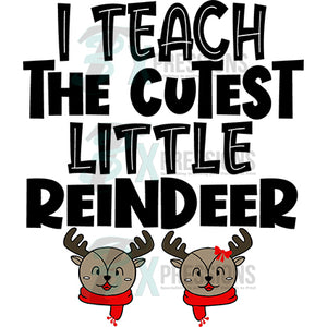 I Teach the cutest little reindeer