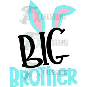 HTV Big Brother BUNNY