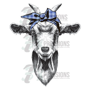 Blue Gingham Scarf Goat - 3T Xpressions