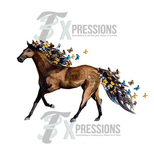 Water Color Horse With Butterflies - 3T Xpressions