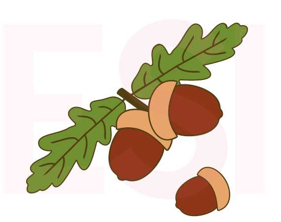 SVG Cutting Files Autumn Acorn and Leaves