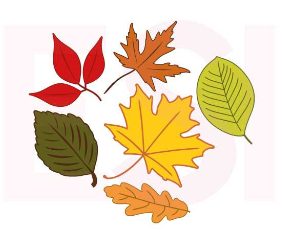 SVG Cutting Files Autumn Leaves