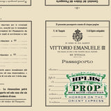 Detail view of vintage Italian passport