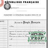 Detail view of vintage French passport