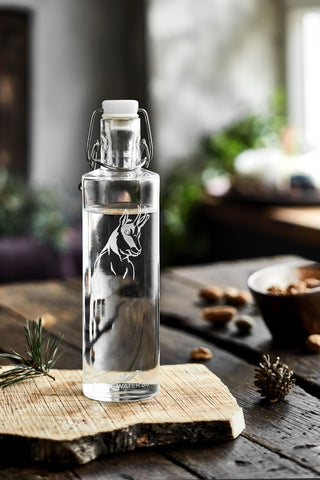 ND Trinkflasche ALPINE WATER BOTTLE (6dl)