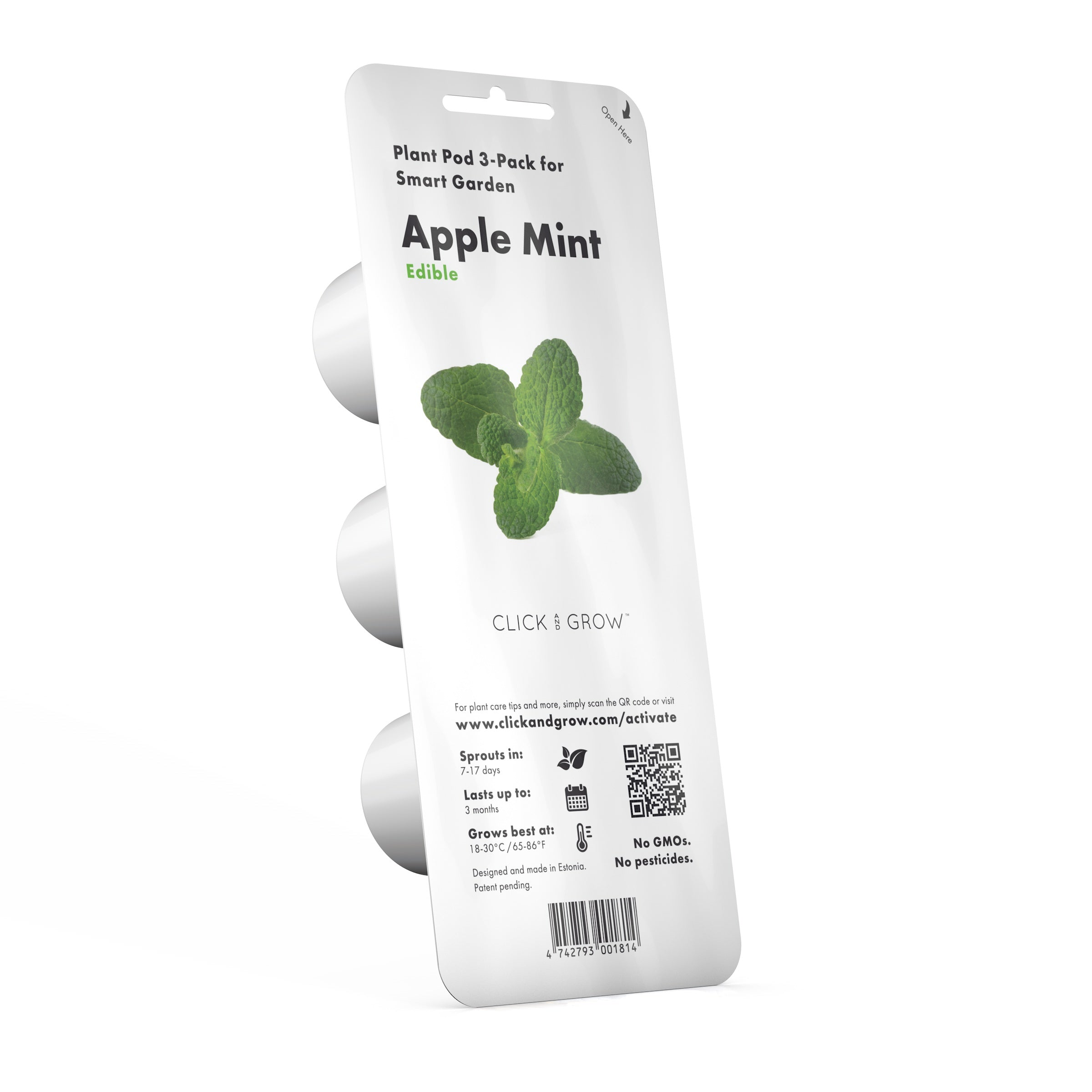 Apple Mint Plant Pods