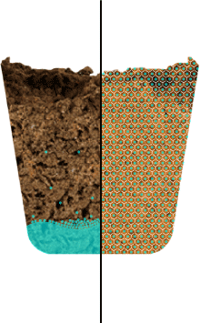 Ordinary potting soil vs Click and Grow Smart Soil