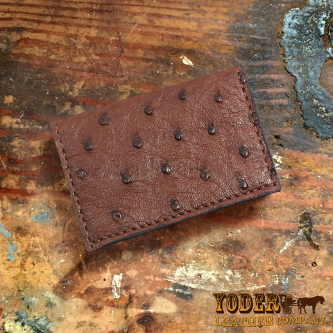 Ostrich Brown Card Case