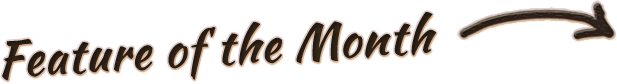 iPhone Leather Case