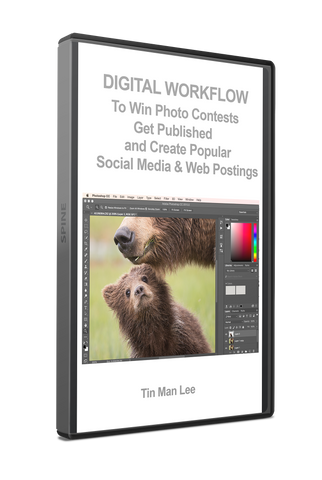 Digital Workflow to Win Photo Contests, Get Published, and Create Popular Social Media & Web Postings by Tin Man Lee
