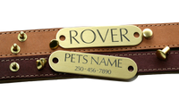 Brass - Collar Tag With Rivets