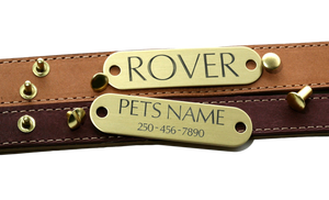 Brass Collar Tag With Rivets