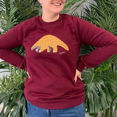 Roly Poly Pangolin Sweater