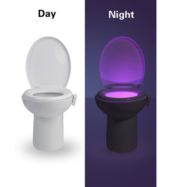 Light Up Toilet Night Light