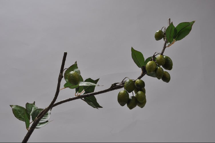Lime Tree Branch 102cm