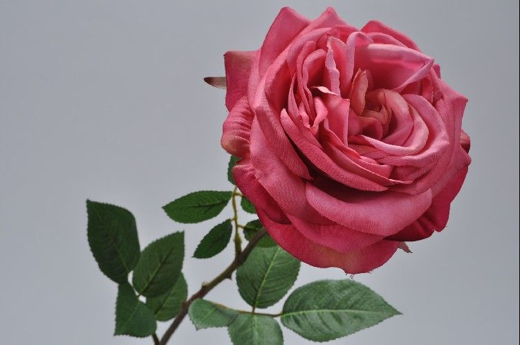 Load image into Gallery viewer, Pink Rose Stem 70cm