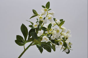 White Hellebore Bunch 42cm