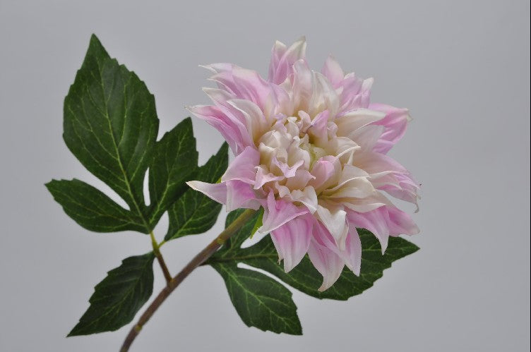 Light Pink Dahlia Stem 49cm