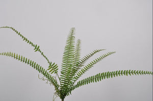 Load image into Gallery viewer, Green Fern 18cm