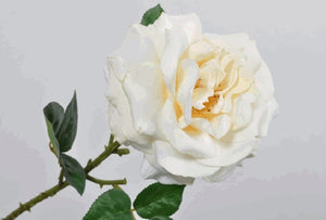 Load image into Gallery viewer, Cream Rose Stem 51cm