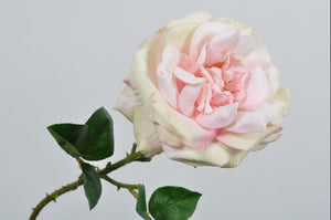 Light Pink Rose Stem 51cm