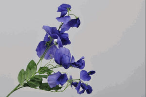 Load image into Gallery viewer, Purple Lathyrus Spray 69cm